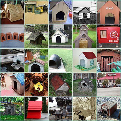 Dog House Mosaic