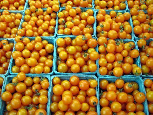 Ann FM cherry tomatoes