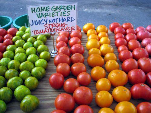 Ann FM tomato rainbow