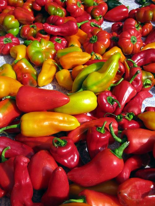 FCFM peppers