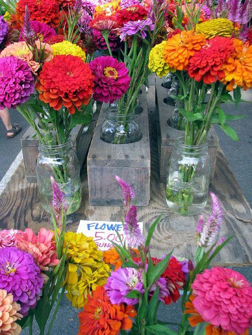 Ann FM flowers
