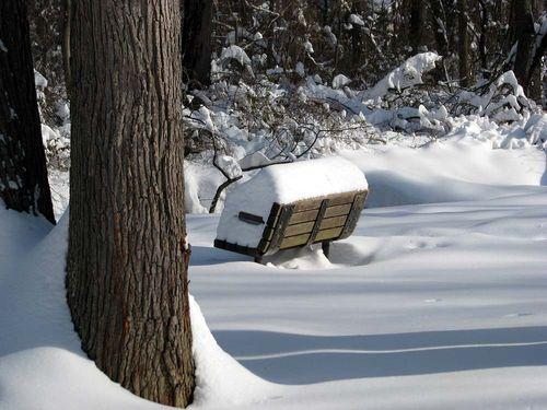 12-20 Snow bench