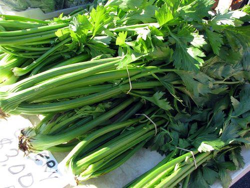 Winter Farmers Market celery