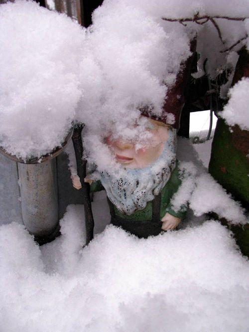 2-3 Snow 2