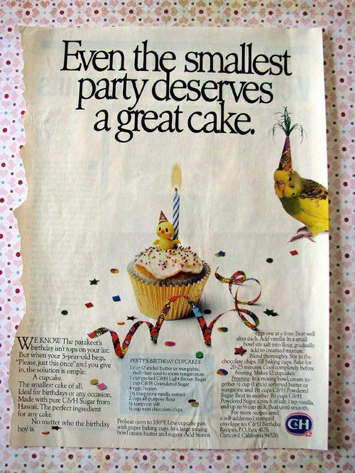 Bird cake 1