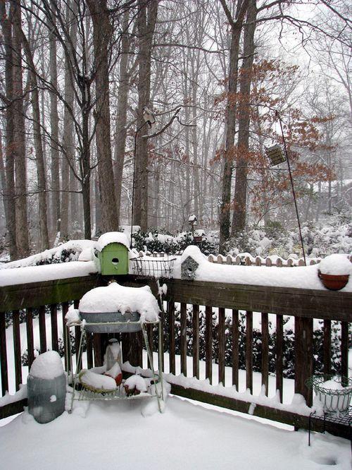 Snow deck 9 am