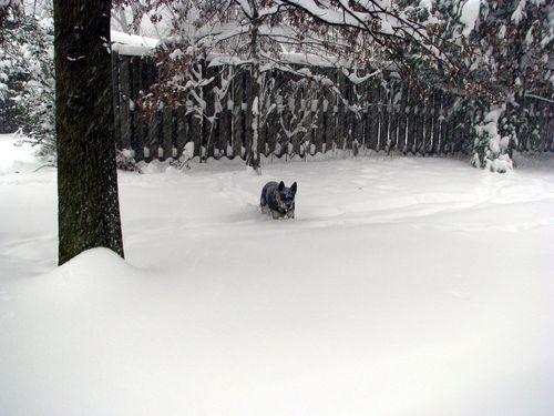Snow Sheila 2