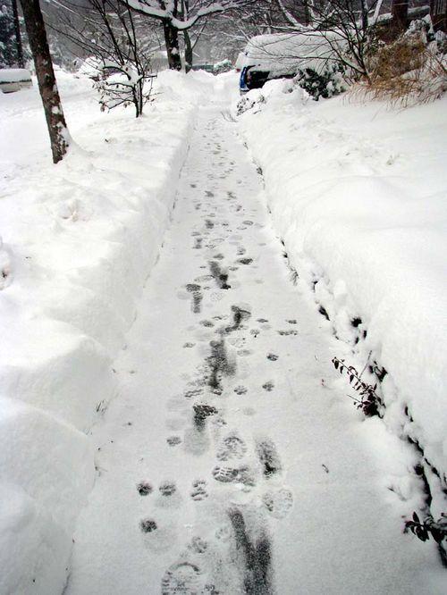 Snow sidewalk
