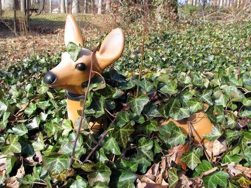 Winter yard deer