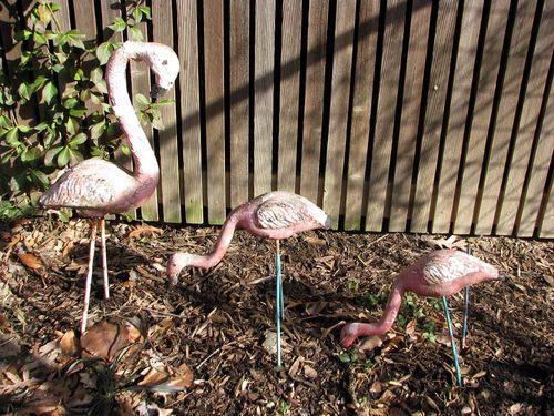 Winter yard flamingo