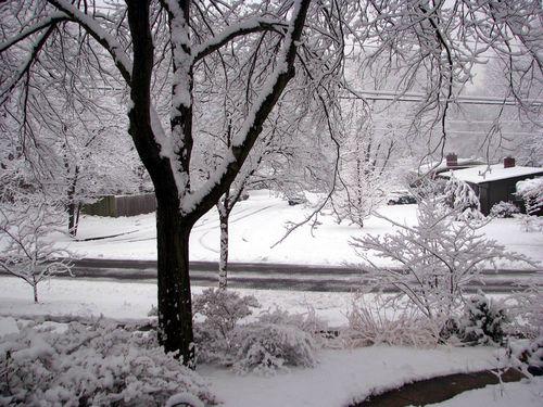 2-3 Snow 4
