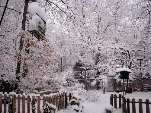 2-3 Snow 3