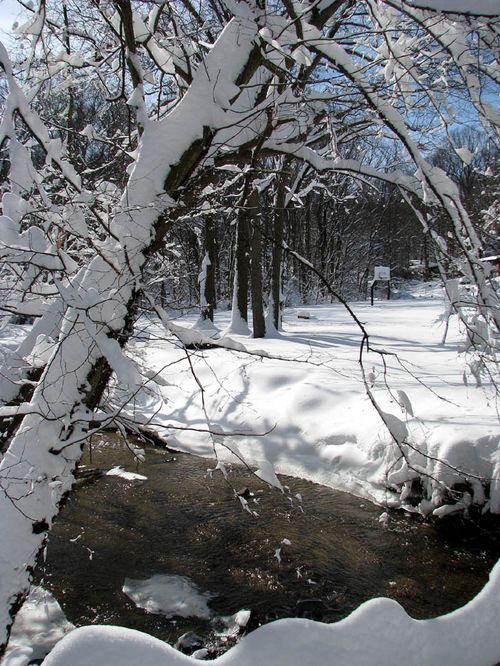 2-7 snow luria stream