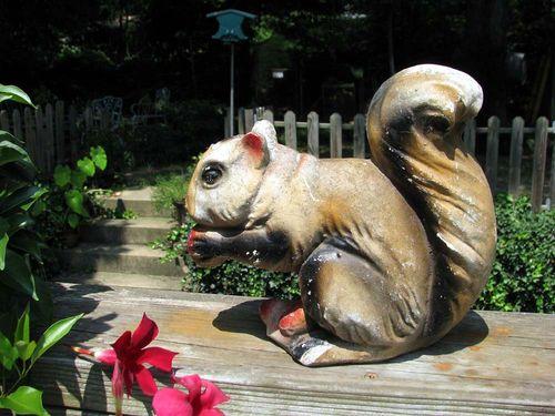 My haul squirrel