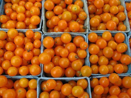 FM tomatoes