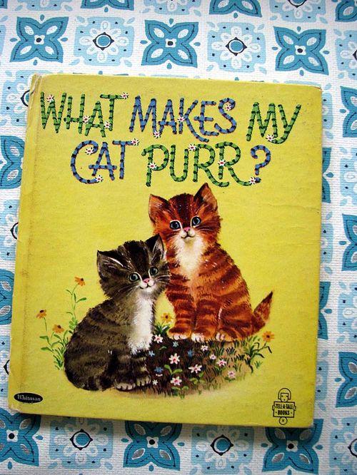 Cat Purr 1