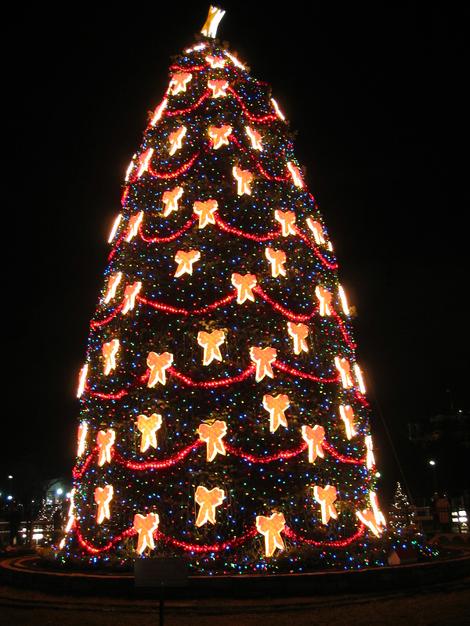 Dc_national_xmas_tree