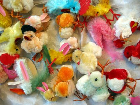 Bf_112_chicks