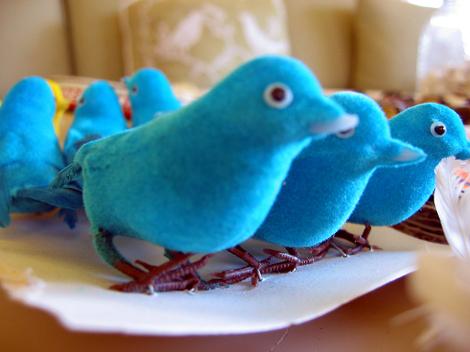 Big_flea_31_blue_birds