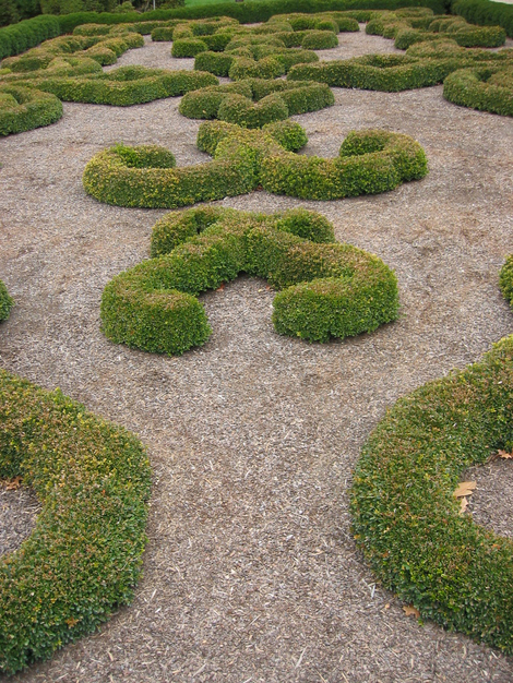 Mt_vernon_topiary
